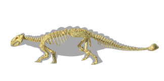 Ankylosaurus dinosaurus silhouette, with full skeleton superimposed. Royalty Free Stock Image