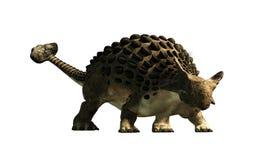 Ankylosaurus med ingen bakgrund stock illustrationer