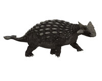 Ankylosaurus Royalty Free Stock Photos