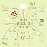 Anlage-ansässige Proteinquellen des strengen Vegetariers Stockfotos
