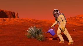 Anlage auf Mars Stockbilder