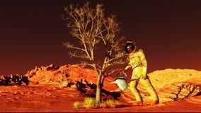 Anlage auf Mars Lizenzfreie Stockfotografie