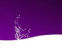 Anlage auf violettem Hintergrund Stockfotografie