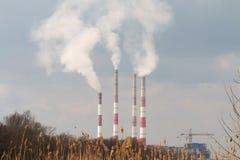 Anlage mit Smog. lizenzfreie stockfotos