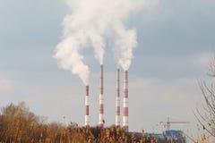 Anlage mit Smog. stockfoto