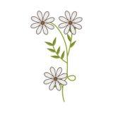 Anlage mit Verzweigung und Gänseblümchenblumen lizenzfreie abbildung