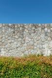 Anlage und Felsenwand Stockfoto