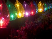 Anlagen in der grellen Weihnachtsbeleuchtung Lizenzfreie Stockfotos