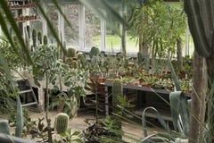Anlagen des botanischen Gartens Stockbilder