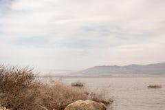 Anlagen des Toten Meers und des schönen Himmels zeichnen Lizenzfreies Stockfoto