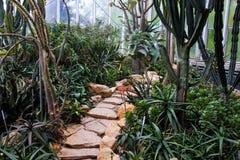 Anlagen in einem botanischen Garten in Genf Stockfotografie