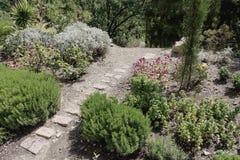 Anlagen im botanischen Garten stockfoto
