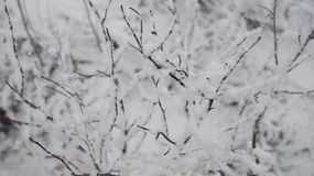 Anlagen im Winter stockfotos
