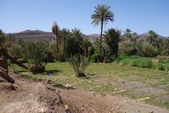Anlagen, kleiner Bauernhof in Moroocco Stockfotos