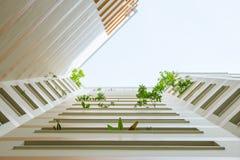 Anlagen und Blumen, die aus Wohnung heraus erreichen Stockbild