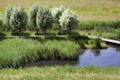 Anlegestelle und Fußweg in der niederländischen Landschaft Lizenzfreie Stockfotos