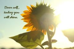 Anmärkningen till den kära själven för själven, i dag ska du skina royaltyfria bilder