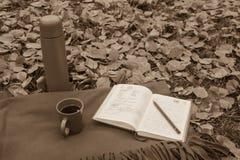 Anmerkungen in einem Notizbuch während eines Picknicks Lizenzfreies Stockbild
