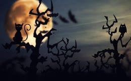 Anmerkungen und ein Baum in einem Mondschein stockfotografie