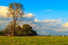 Annäherung des Herbstes Stockbild