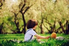 3 années élégantes belles d'enfant en bas âge de garçon d'enfant avec le visage drôle dans des bretelles appréciant des bonbons s Photographie stock libre de droits