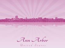 Ann Arbor linia horyzontu w purpurowej opromienionej orchidei Zdjęcie Stock