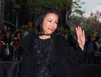Ann Curry. TV personality and former NBC Today Show contributor Ann Curry arrives on the red carpet outside the Time Warner Center in Manhattan on April 24, 2012 stock photo