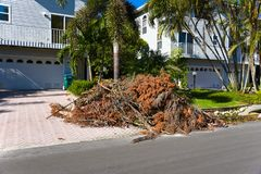 Hurricane Irma Cleanup. ANNA MARIA ISLAND, FL - October 2, 2017:Aftermath of Hurricane Irma on Anna Maria Island, Florida. Piles of Trees, Branches and debris Stock Image