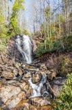 Anna Ruby Falls Foto de Stock