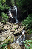 Anna Ruby Falls Stock Image