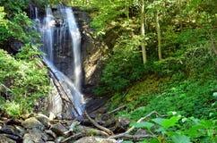 Anna Ruby Falls vattenfall royaltyfria bilder