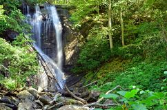Anna Ruby Falls-waterval royalty-vrije stock afbeeldingen