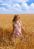 Anna in wheat field 1 Royalty Free Stock Image