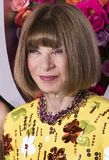 Anna Wintour at 2018 Tony Awards. American and English fashion maven and journalist Anna Wintour arrives on the red carpet for the 72nd Annual Tony Awards held Stock Photos