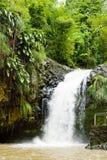 Annadale Falls Stock Image