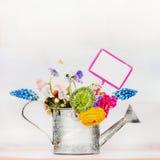 Annaffiatoio con i fiori del giardino ed il segno di giardinaggio Immagine Stock Libera da Diritti
