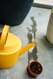 Annaffiatoio giallo con il vaso asciutto di tonnellata Immagine Stock Libera da Diritti