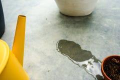 Annaffiatoio giallo con il vaso asciutto di tonnellata Fotografia Stock Libera da Diritti
