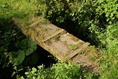 Annan flod Royaltyfria Bilder