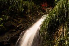 Annandale vattenfall, Grenada Royaltyfria Foton
