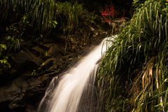 Annandale-Wasserfall, Grenada Lizenzfreie Stockfotos
