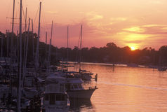 Annapolis Harbor at Sunset, Annapolis, Maryland Stock Photo