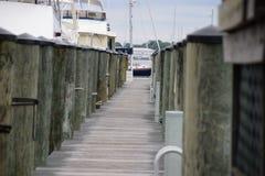 Annapolis marina Arkivfoto