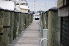 Annapolis Marina Stock Photo