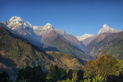 Annapurna base camp trekking in Nepal Stock Photo