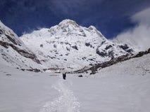 Annapurna basläger (abc:et), Nepal - Himalayas Royaltyfria Bilder