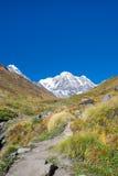 Annapurna del sur Imagen de archivo libre de regalías