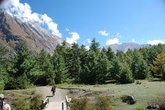Annapurna landsacpe -  Nepal. The around Annapurna trek in Nepal Stock Image