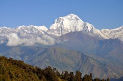 Annapurna massiv. Nepal. royaltyfria bilder