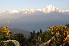 Annapurna massiv. Nepal. royaltyfri foto